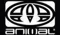 bb3live.com